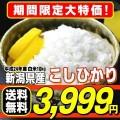 24年産 新潟県産 こしひかり10kg