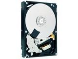 SEAGATE ST3000DM001 3TB 内蔵HDD SATA