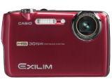 CASIO HIGH SPEED EXILIM EX-FS10 高速連写 910万画素デジタルカメラ