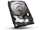 SEAGATE ST3000DM001 内蔵HDD 3TB SATA
