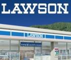 全国のローソンで使える ローソンお買い物券 500円分が100円