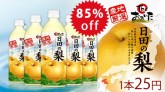大分産ブランド梨の果汁を厳選使用 The・おおいた 日田の梨 500ml×48