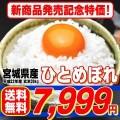 新米 23年産 宮城県産 ひとめぼれ 玄米 30kg